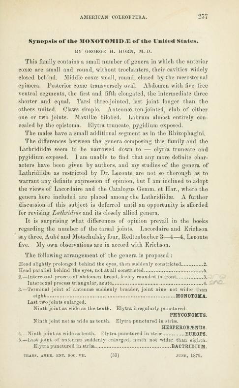 Horn (1879) Trans. Am. Ent. Soc. 7:257-267